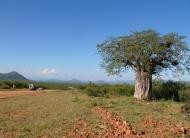 Kaokoland in Namibia