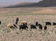 Hirte im Hohen Atlas Marokko